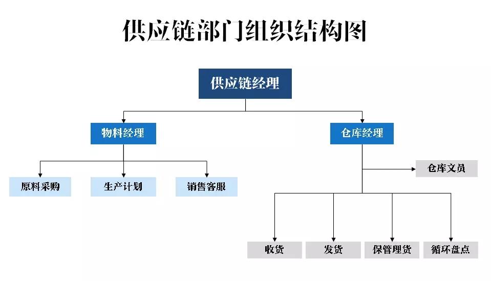 供应链和仓库部门的组织结构范例